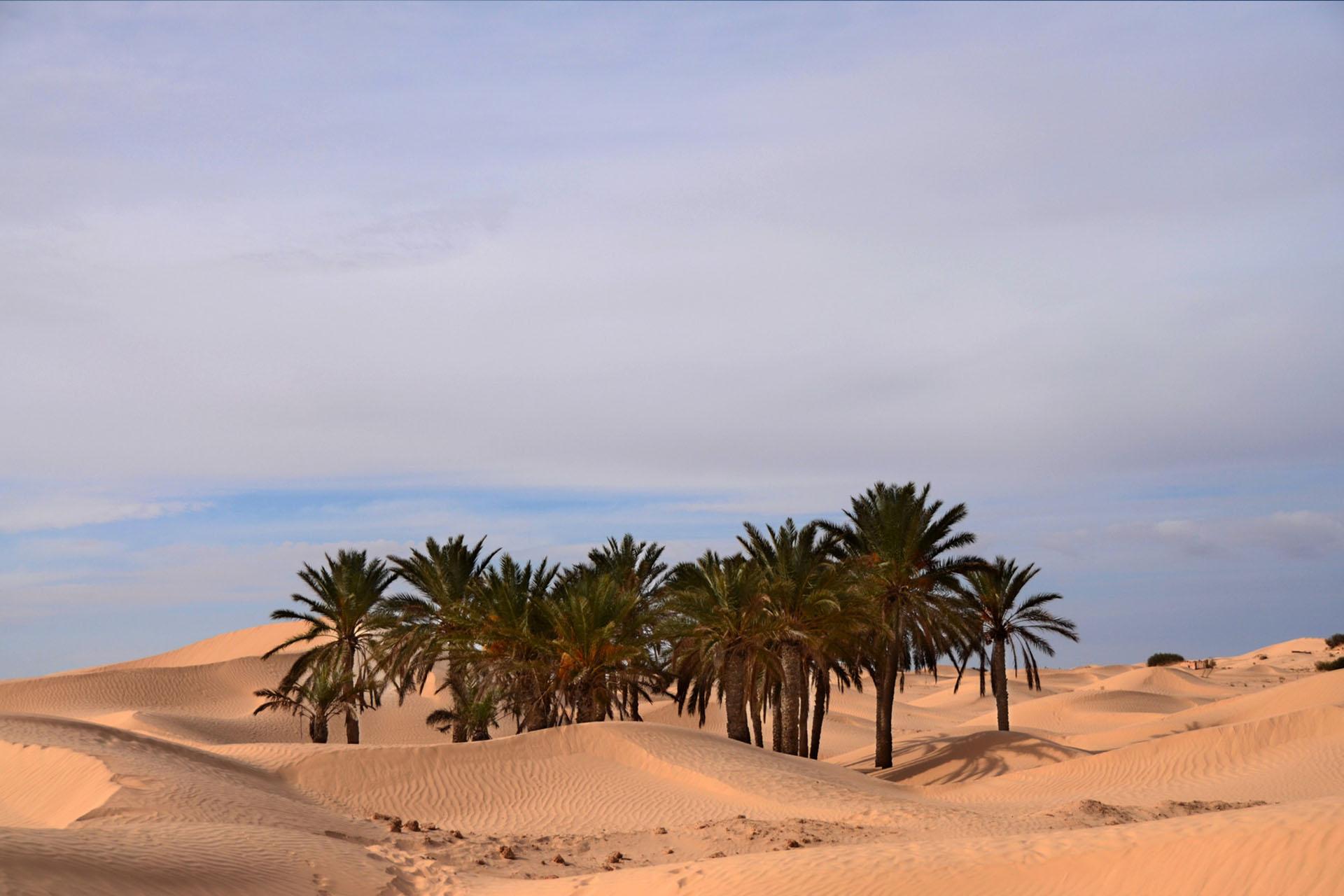 TUNISIA 2019 08