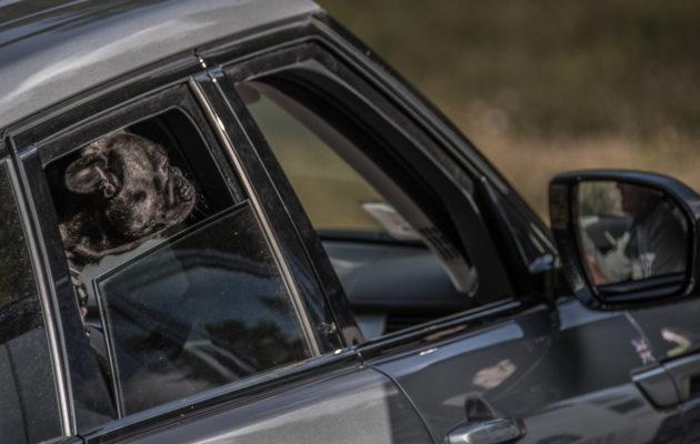 Land_Rover_Day_Valle_Aosta_201940