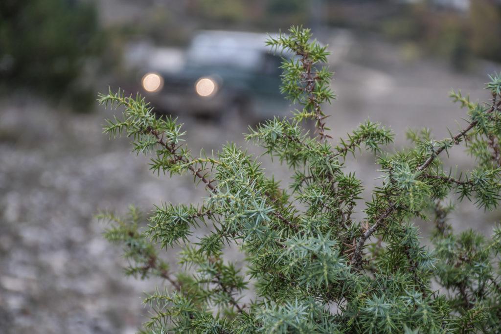 Tirreno_Adriatica_2019_Land_Rover_Experience_Italia_Registro_Italiano_Land_Rover150