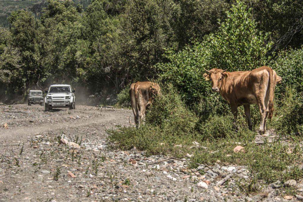 Land Rover Tour Sardegna 2020 – Tappa 02 – Land Rover Experience Italia – Registro Italiano Land Rover-37