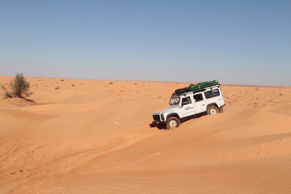 Land-Rover-Experience-Italia-Registro-Italiano-Land-Rover-Experdition-Tunisia-2019-42
