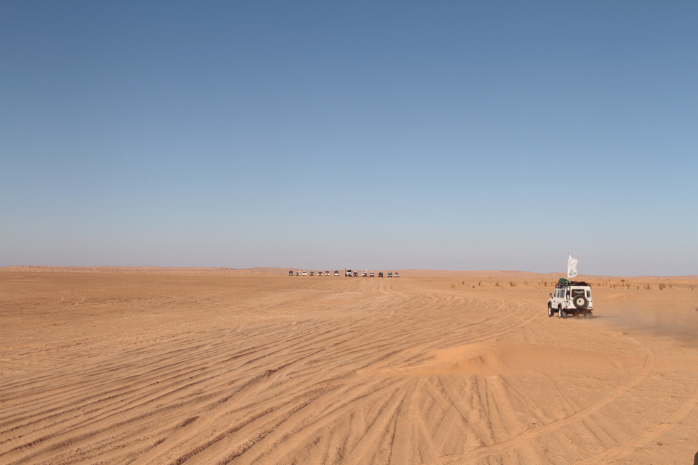 Land-Rover-Experience-Italia-Registro-Italiano-Land-Rover-Experdition-Tunisia-2019-81