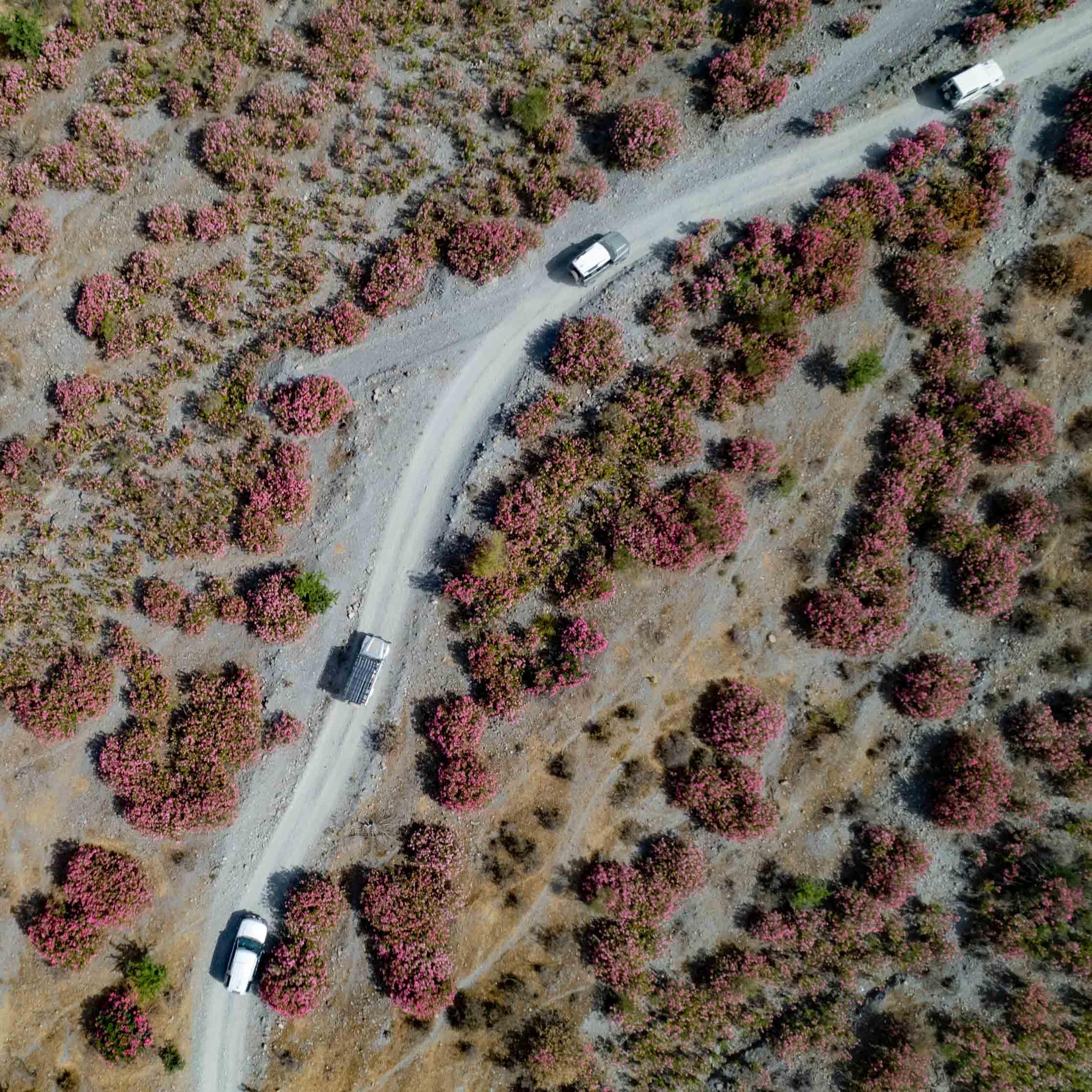 Land_Rover_Tour_Sicilia_2021_Land_Rover_Experience_Italia_-6