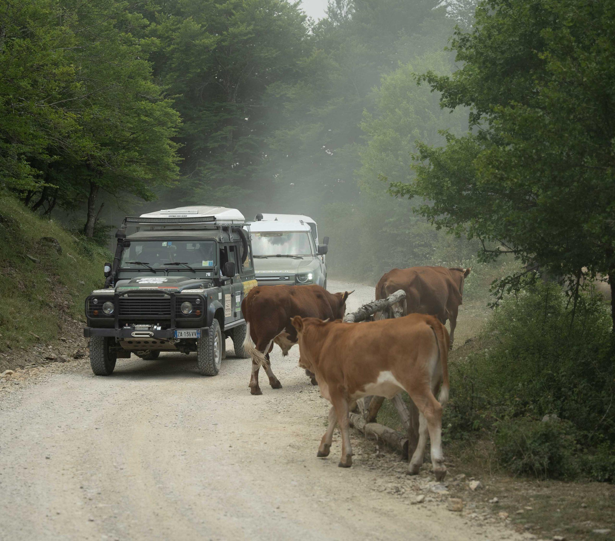 Land_Rover_Tour_Sicilia_2021_Land_Rover_Experience_Italia_-64